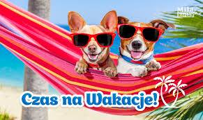 Wyjazd z psem za granicę – jak się przygotować…
